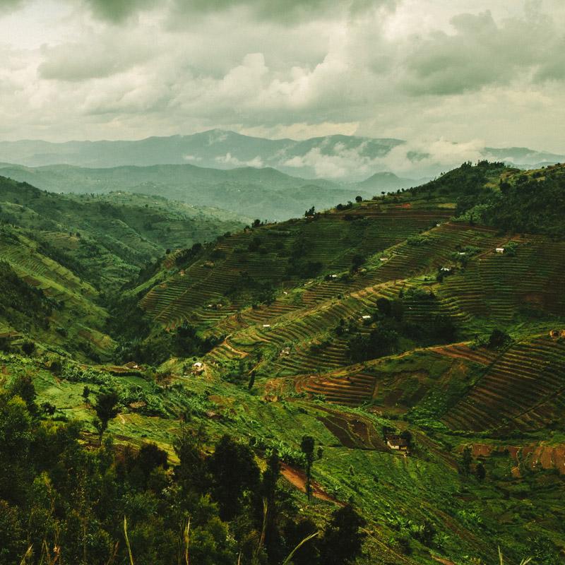 rwandan-hills